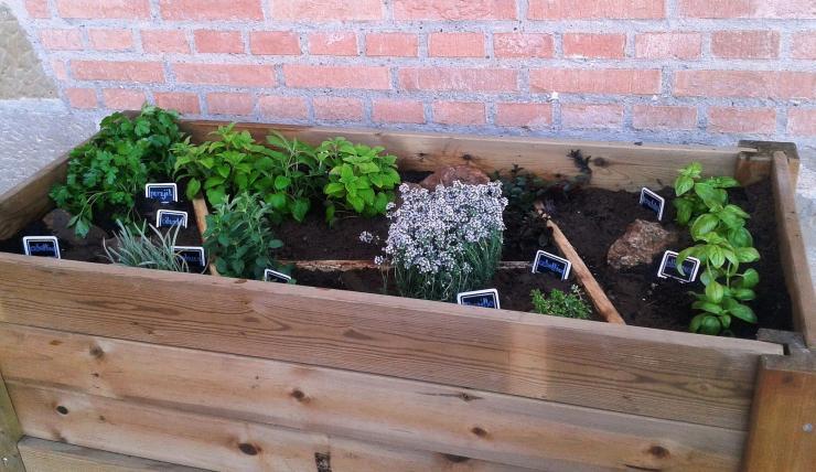 Carnet de aplicador en Huerta y Jardín