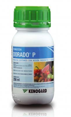 Envase Dorado P