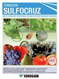 Caja Sulfocruz